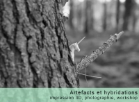 Artefacts et hybridations
